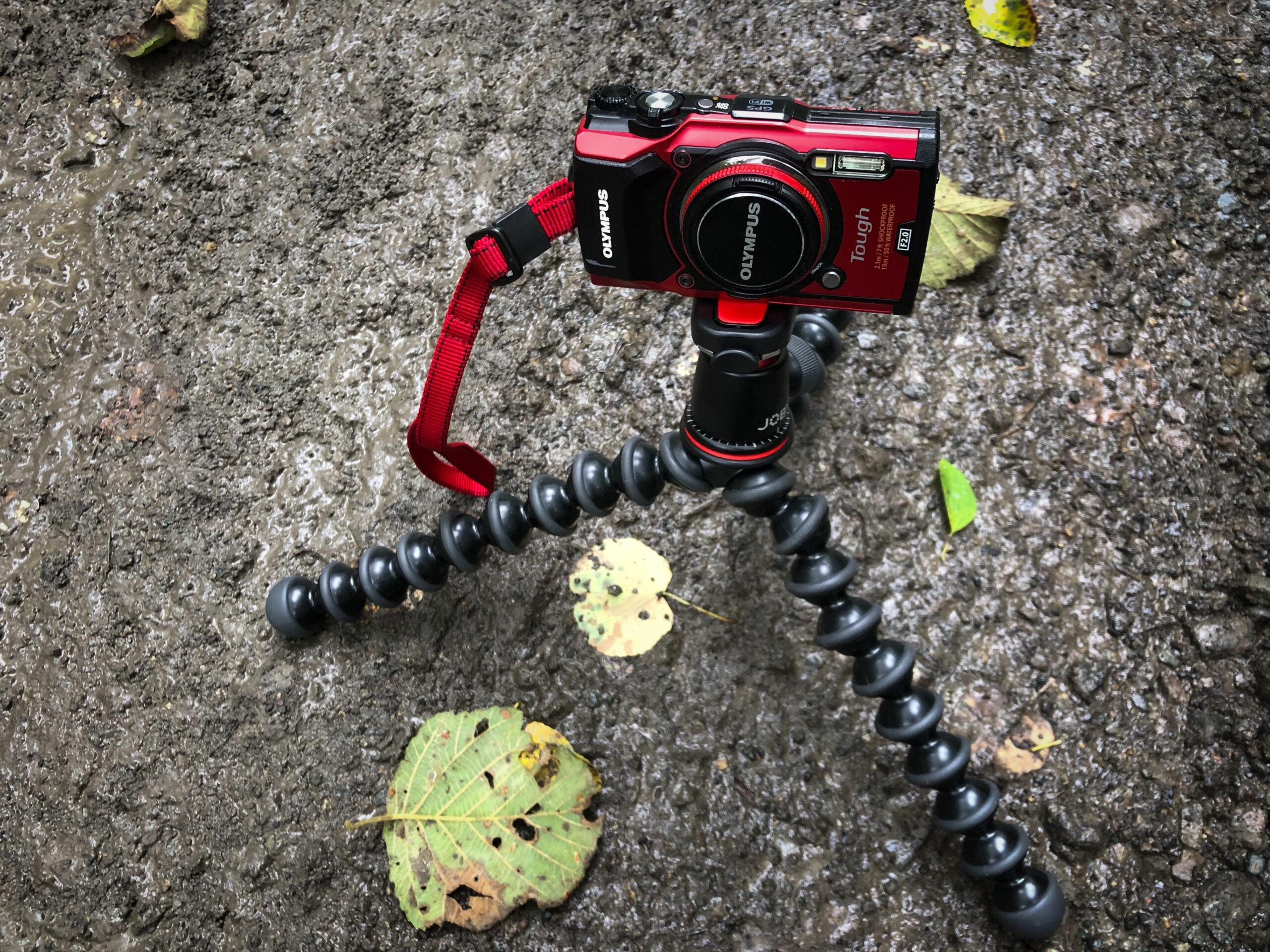 マクロ撮影が簡単に楽しめるカメラはやっぱりオリンパスのTGシリーズ
