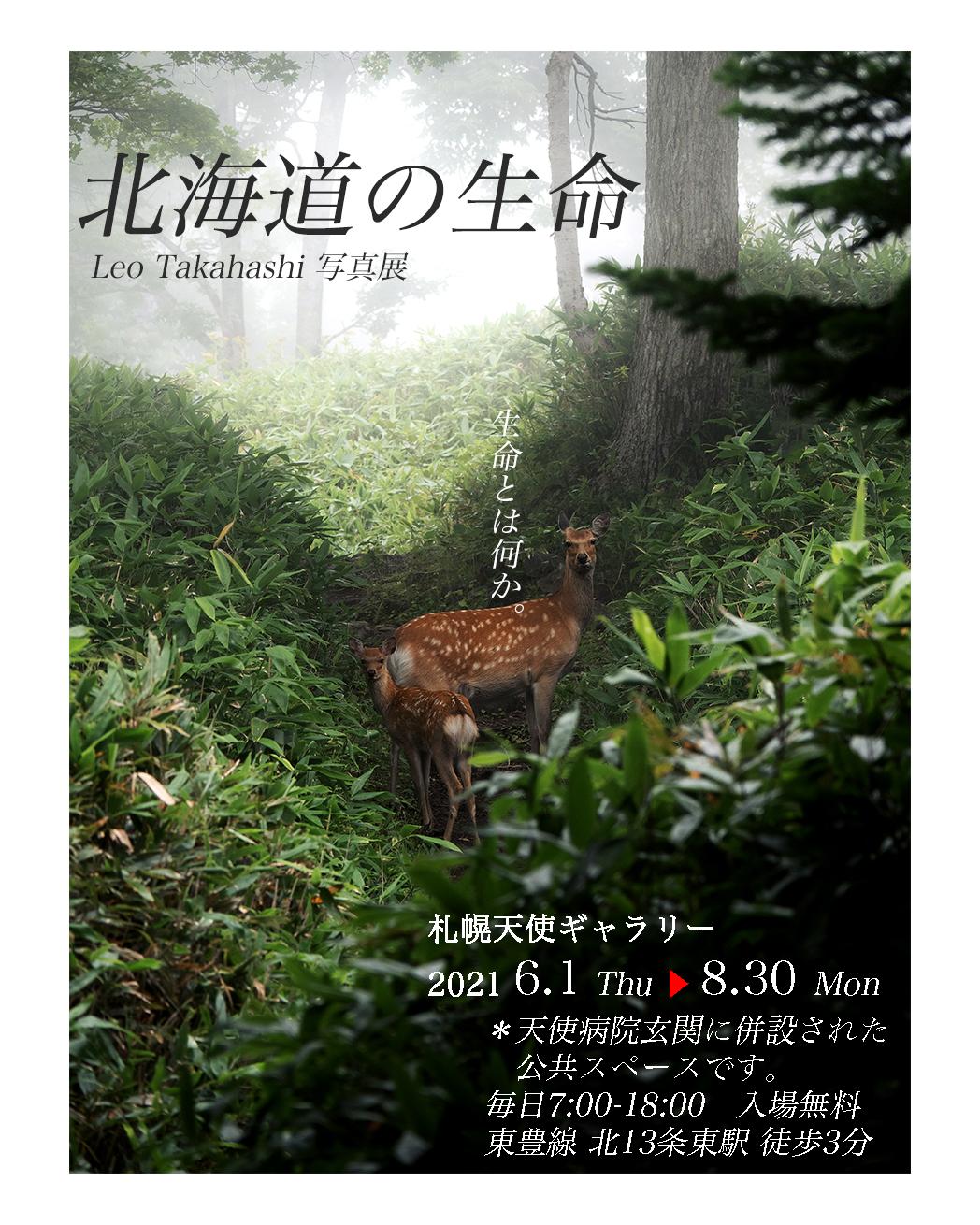 高橋レオ個展・写真展北海道の生命